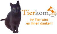 Tierkommunikation, Radionik, Reiki und Homöopathie für Hund, Katze, Pferd u. a. Tiere